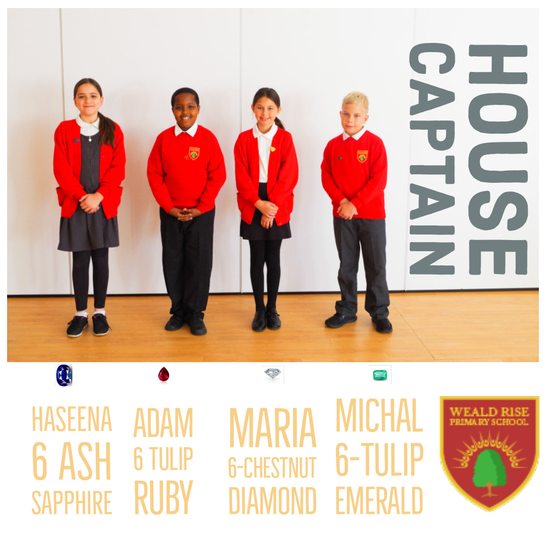 House Captains